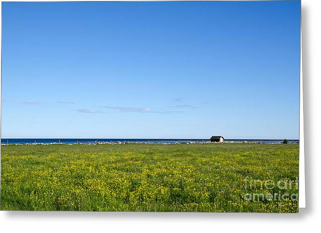 Greeting Card featuring the photograph Blue And Yellow Landscape by Kennerth and Birgitta Kullman