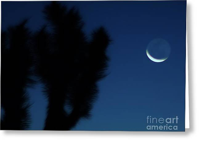 Greeting Card featuring the photograph Blue by Angela J Wright