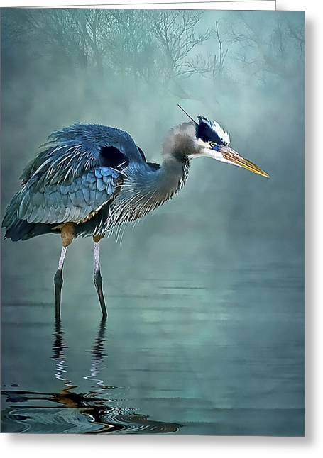 Greeting Card featuring the photograph Blue Bayou by Brian Tarr