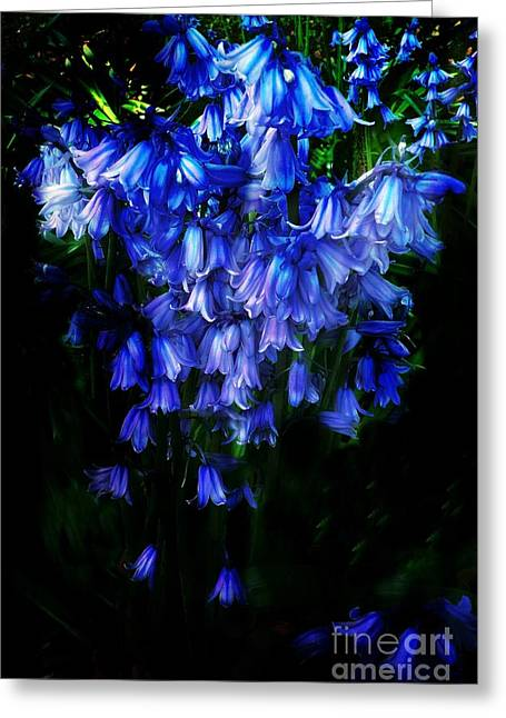 Blue Bells Greeting Card by Scott Allison