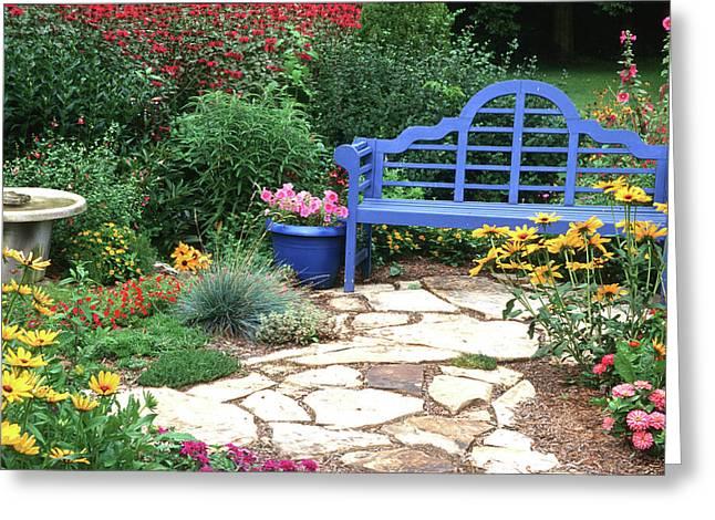 Blue Bench, Potted Plants And Birdbath Greeting Card