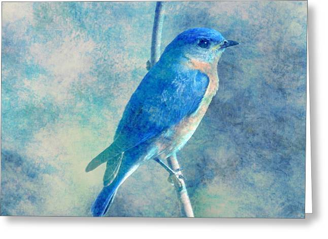 Blue Bird Blue Sky Greeting Card
