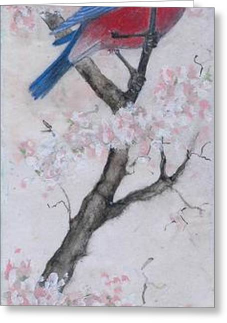 Blue Bird In Cherry Blossoms 2 Greeting Card by Sandy Clift