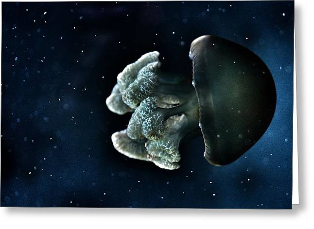 Blue Blubber Jelly Greeting Card by Marianna Mills