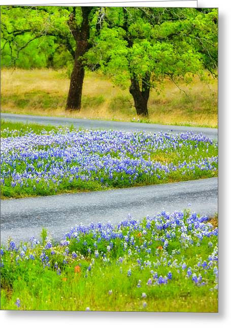 Blue Bonnets Greeting Card by Joan Bertucci
