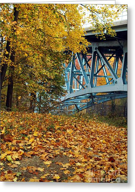 Blue Bridge Beauty Greeting Card by Trish Hale