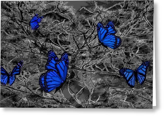 Blue Butterflies 2 Greeting Card by Barbara St Jean