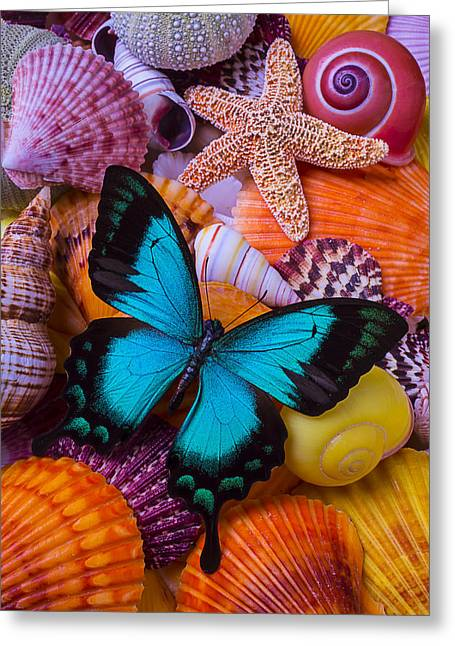 Blue Butterfly Among Sea Shells Greeting Card