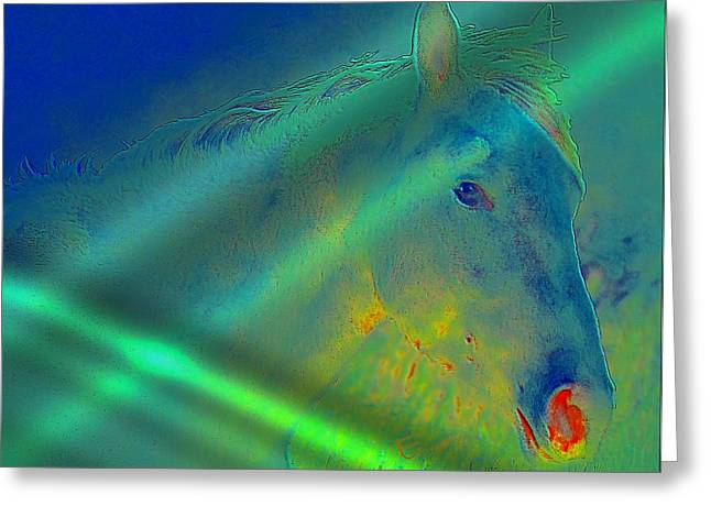 Blue Eyed Horse Greeting Card