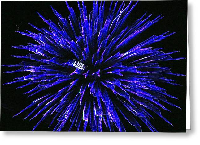 Blue Firewoks Greeting Card