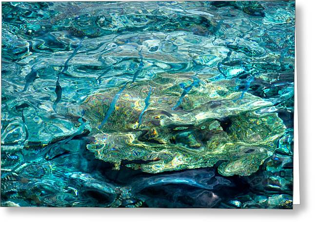 Blue Fishes In Blue Water Greeting Card by Jenny Rainbow