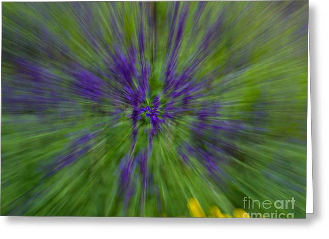 Greeting Card featuring the photograph Blue Floral Blur by Dale Nelson