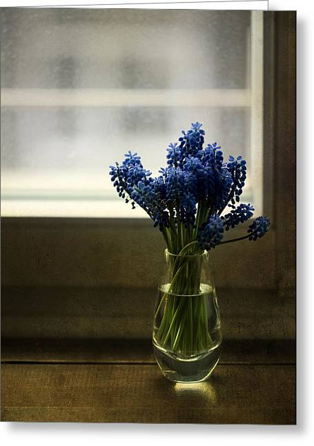 Blue Grape Hyacinth Flowers In The Glass Flowerpot Greeting Card
