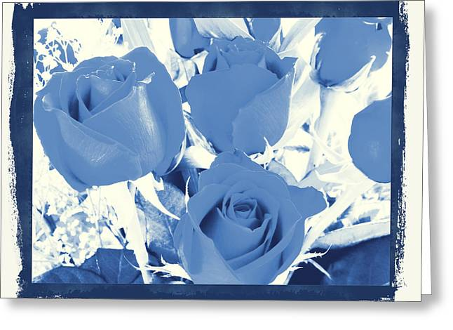 Blue For You Roses Greeting Card by Belinda Lee
