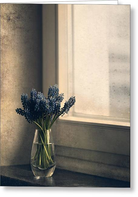 Blue Grape Hyacinth Flowers At The Window Greeting Card