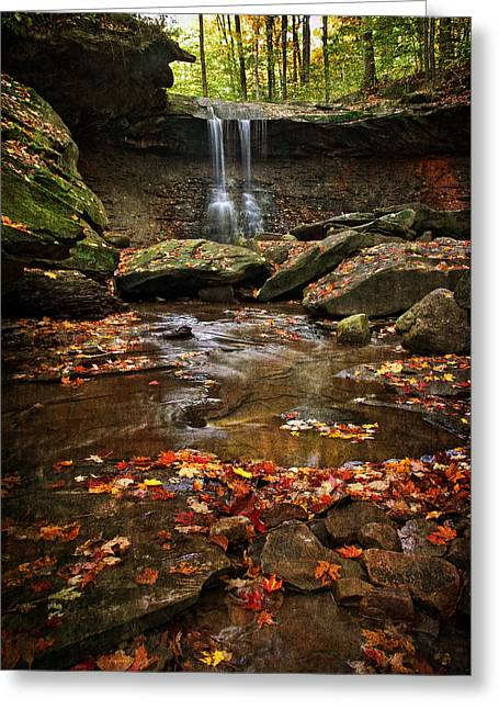 Blue Hen Falls In Autumn Greeting Card by Dale Kincaid