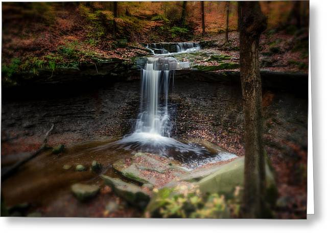 Blue Hen Falls Greeting Card by Michael Demagall