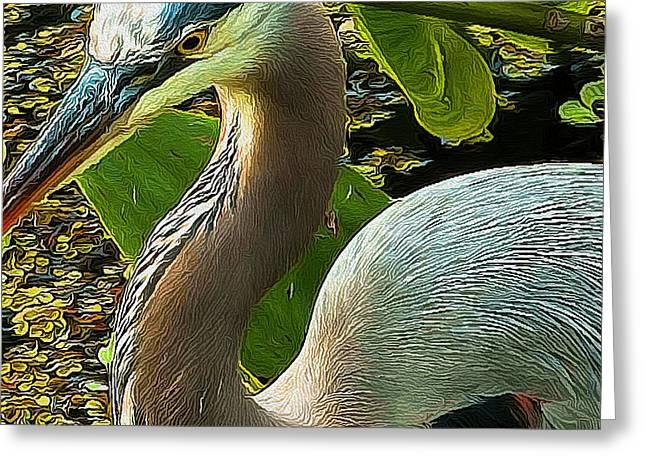 Blue Heron Addict Greeting Card by Jim Pavelle