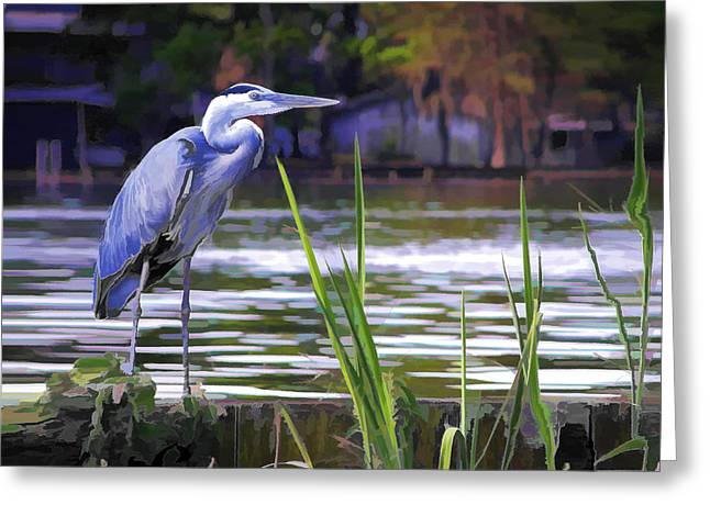 Blue Heron On The Bay Greeting Card by Elaine Plesser