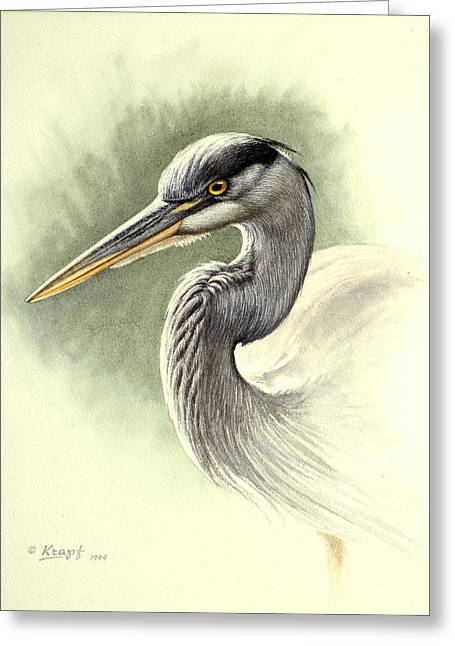 Blue Heron   Greeting Card by Paul Krapf