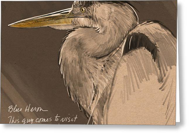 Blue Heron Sketch Greeting Card