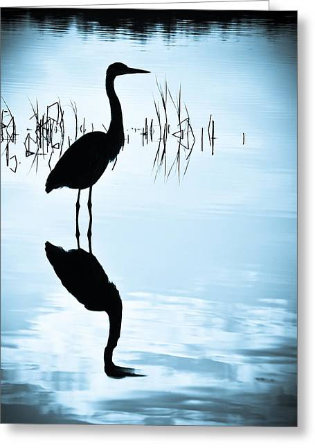 Greeting Card featuring the photograph Blue Herons by Francis Trudeau