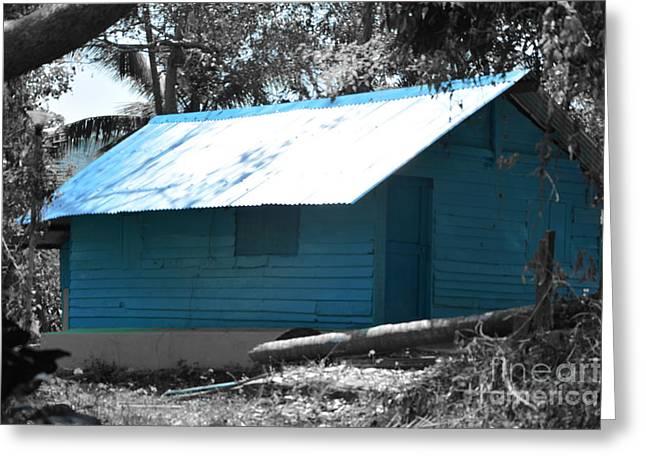 Blue House  Greeting Card by Bobby Mandal