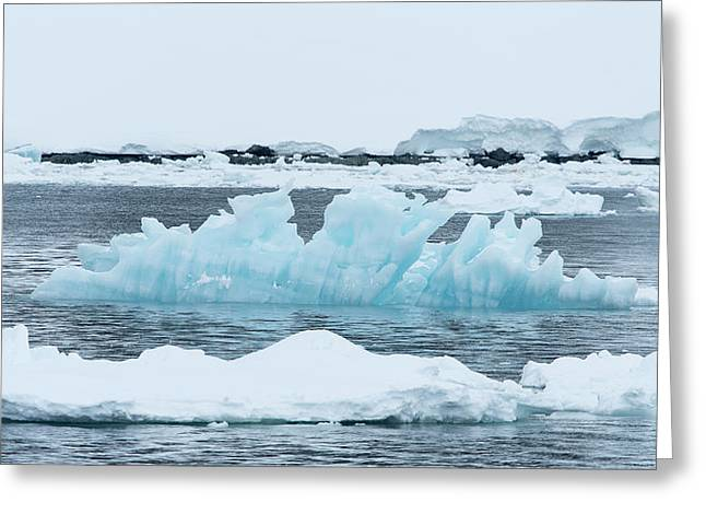 Blue Ice Floats In Neumayer Channel Greeting Card