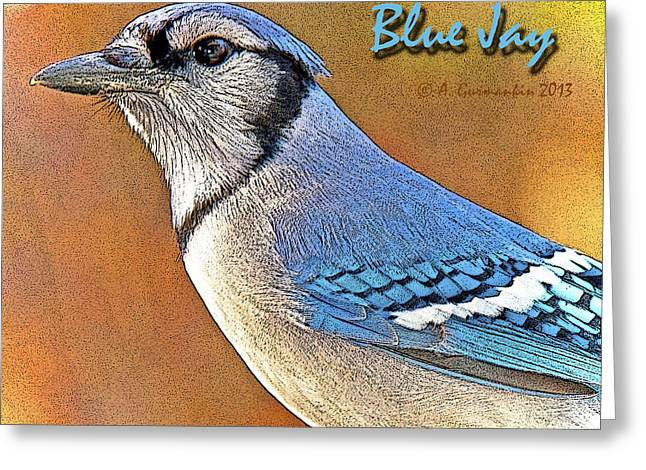 Greeting Card featuring the photograph Blue Jay by A Gurmankin