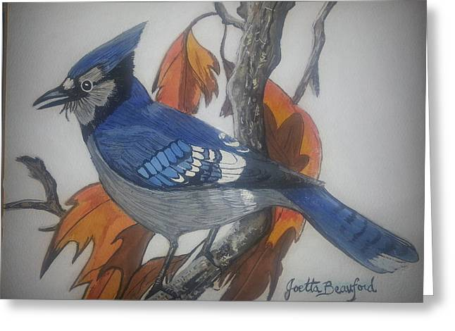 Blue Jay At Fall Greeting Card by Joetta Beauford