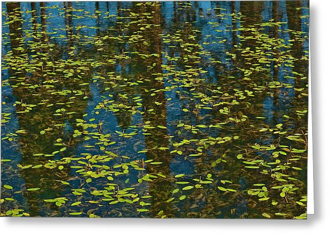 Greeting Card featuring the photograph Blue Lake Reflections by Sherri Meyer