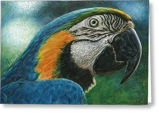 Greeting Card featuring the drawing Blue Macaw by Sandra LaFaut