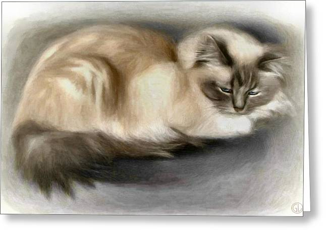 Blue Masked Birman Greeting Card by Gun Legler