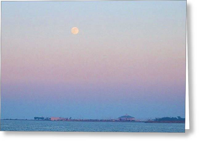 Blue Moon Eve Greeting Card by Deborah Lacoste