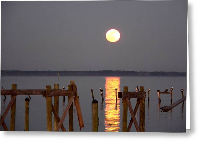 Blue Moon On The Bay On New Years Eve 2009 Greeting Card