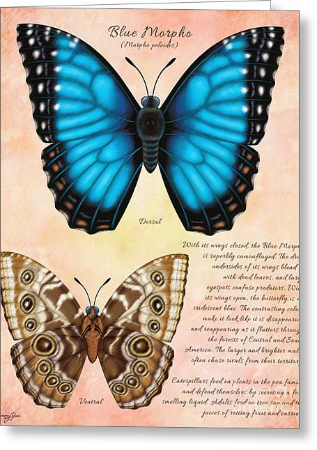 Blue Morpho Butterfly Greeting Card by Tammy Yee