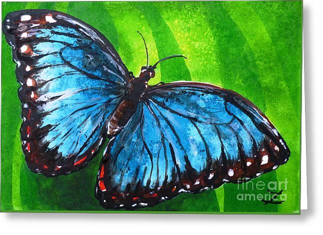 Blue Morpho Butterfly Greeting Card by Zaira Dzhaubaeva