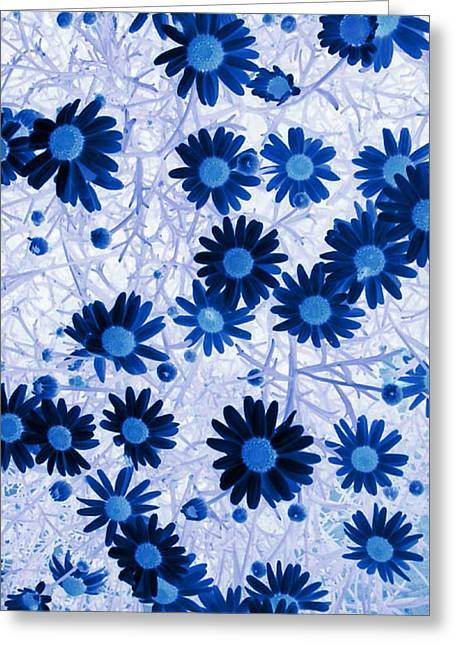 Greeting Card featuring the digital art Blue Mystical Daisies  by Sandra Foster