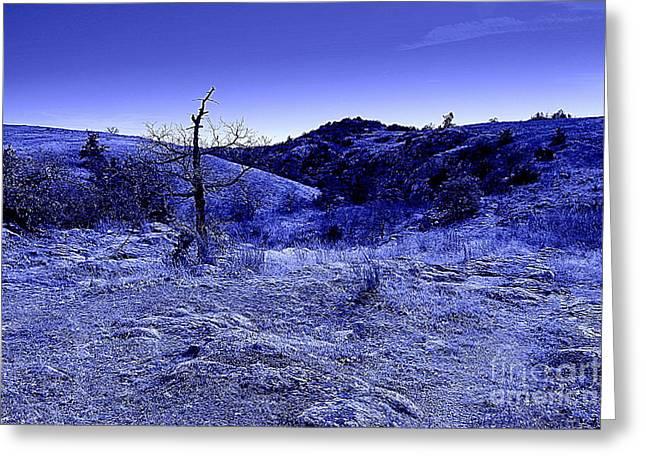 Blue Night Greeting Card by Mickey Harkins