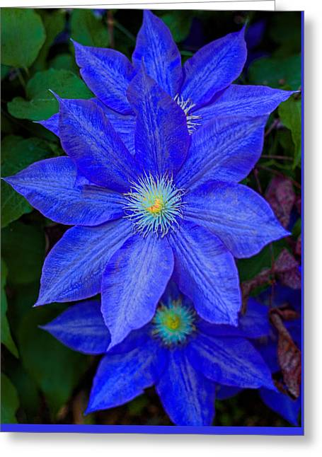 Blue On Blue Greeting Card