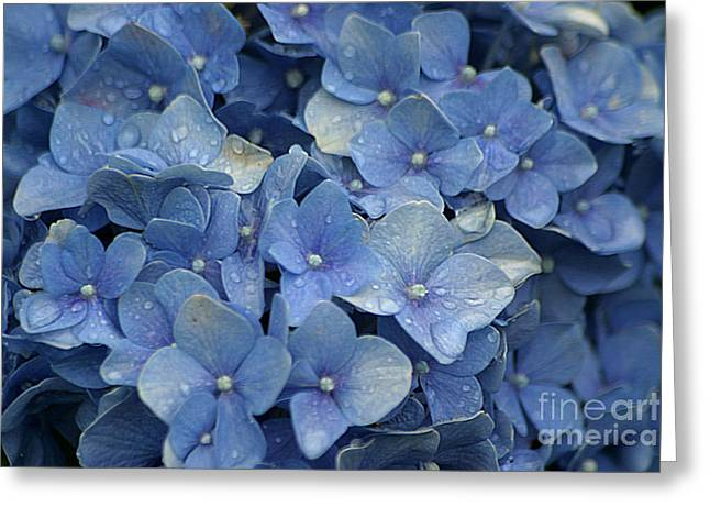 Blue Over You With Tears Greeting Card