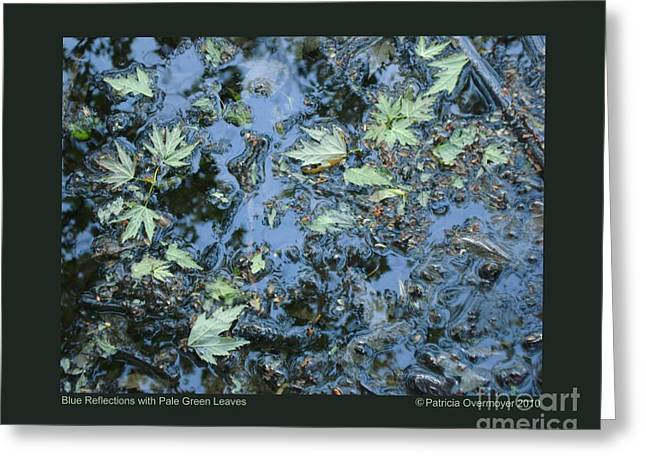 Blue Reflections With Pale Green Leaves Greeting Card by Patricia Overmoyer