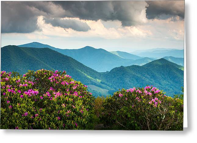 Blue Ridge Appalachian Mountain Peaks And Spring Rhododendron Flowers Greeting Card by Dave Allen