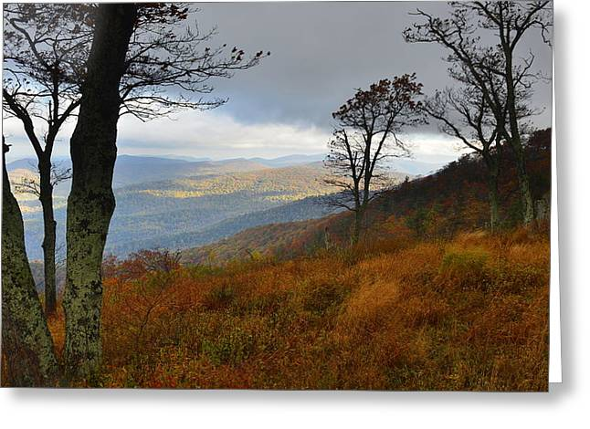 Greeting Card featuring the photograph Blue Ridge Autumn Morning by Stephen  Vecchiotti