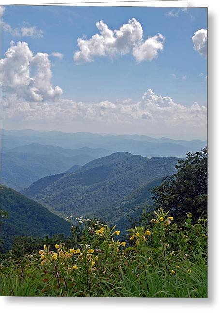 Blue Ridge Blossoms Greeting Card by Mary Anne Baker
