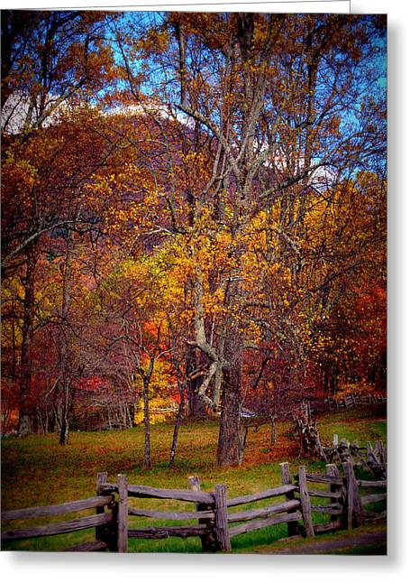 Blue Ridge Fenced In Fall Greeting Card