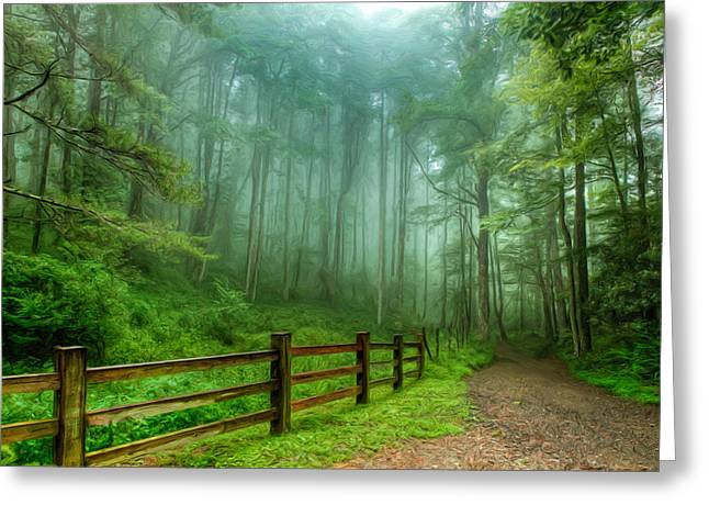 Blue Ridge Parkway - Foggy Country Road And Trees II Greeting Card by Dan Carmichael