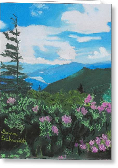 Blue Ridge Parkway In June Greeting Card
