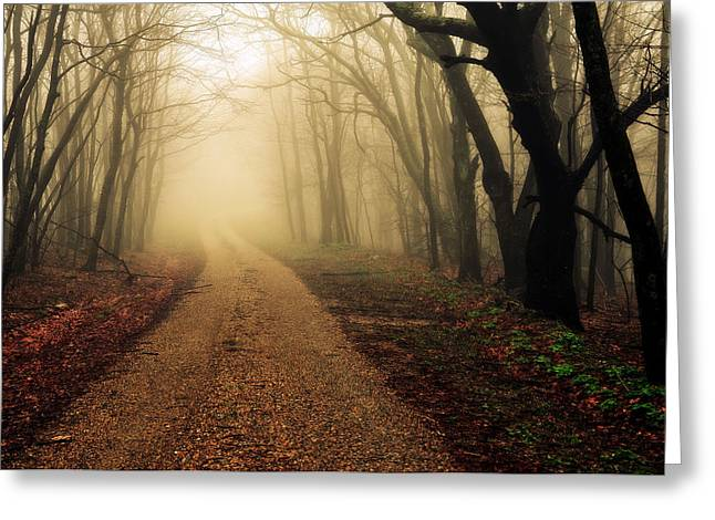 Blue Ridge Parkway In The Fog Greeting Card by Maria Jaeger