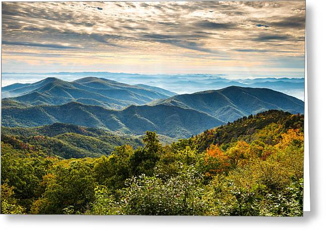 Blue Ridge Parkway Sunrise - Light Lines And Leaves Greeting Card by Dave Allen